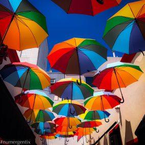 parapluies en couleur