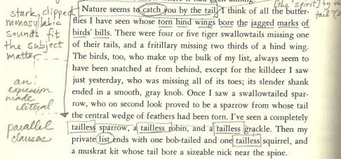 pilgrim page 236