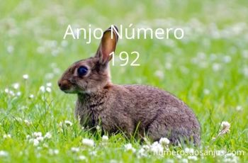 Significado do anjo número 192 – Vendo 192