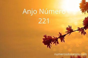 Anjo Número 221 – Significado do Número do Anjo 221