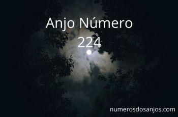 Significado do anjo número 224 – Significado do anjo número 224