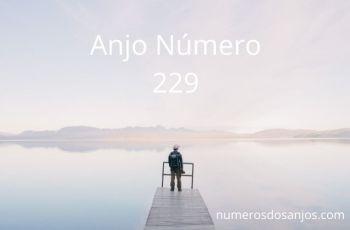 Significado do anjo número 229 – Significado do Número do Anjo 229