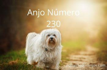 Anjo Número 230 – Significado de 230 Número do Anjo