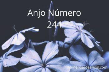 Anjo Número 244 – Significado do anjo número 244