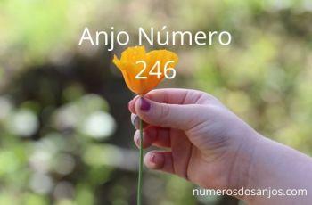Anjo Número 246 – Significado do anjo número 246