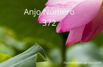 Anjo Número 372 – Significado do anjo número 372