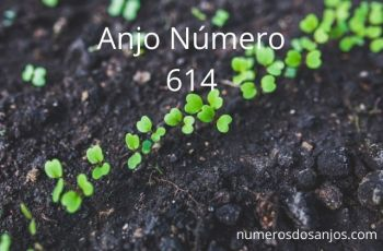 Anjo Número 614 – Significado do anjo número 614