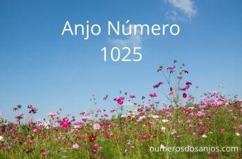 Anjo Número 1025 – Significado do anjo número 1025