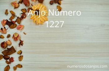 Anjo Número 1227 – Significado do anjo número 1227