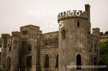 Anjo Número 1255 – Significado do anjo número 1255