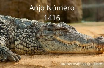 Anjo Número 1416 – Significado do anjo número 1416