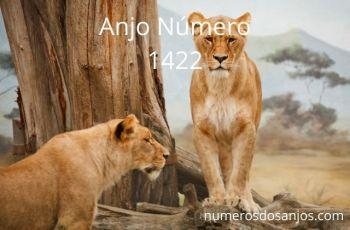 Anjo Número 1422 – Significado do anjo número 1422