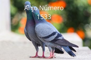 Anjo Número 1533 – Significado do número do anjo 1533