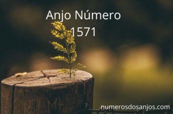 Anjo Número 1571 – Significado do anjo número 1571