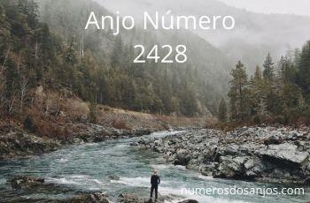 Número do anjo 2428: Explore suas opções