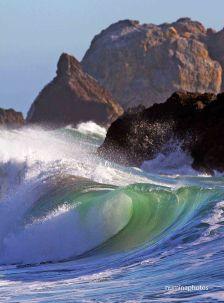 Sonoma Wave