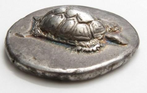 tartaruga de egina