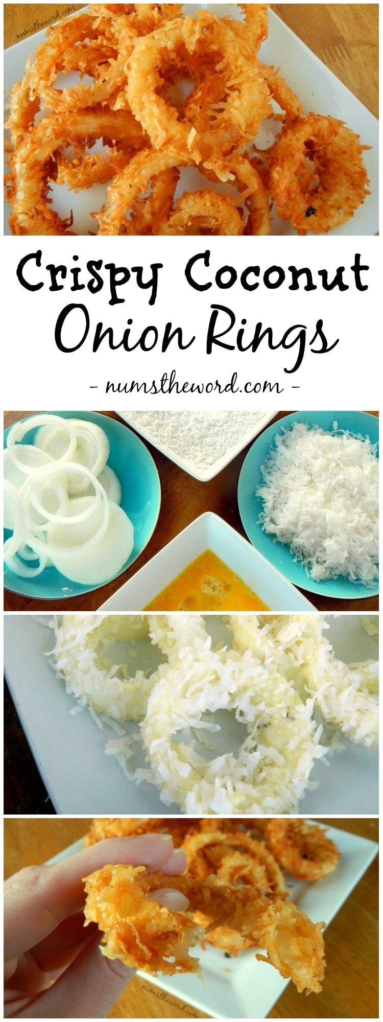 Crispy Coconut Onion Rings