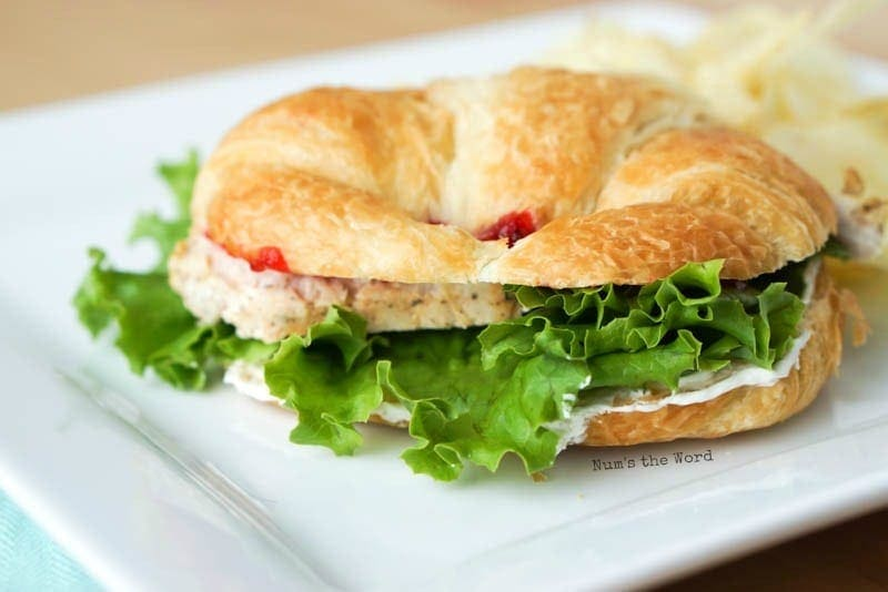 The Best Turkey & Cranberry Sandwich