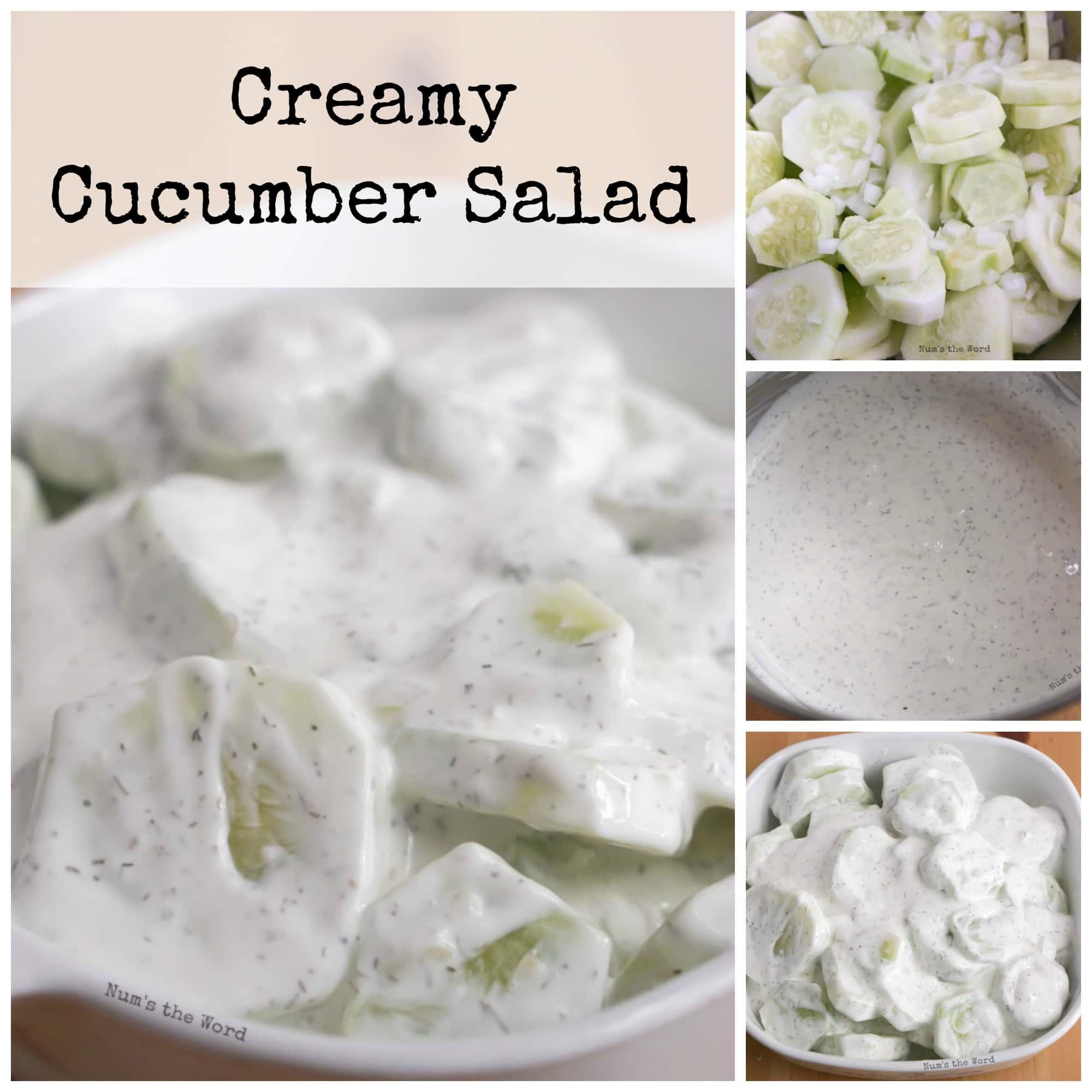 Creamy Cucumber Salad - Num's the Word