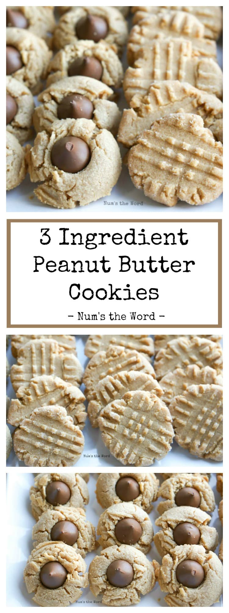 3-Ingredient Peanut Butter Cookie Recipe {Two Ways} - Num's the Word