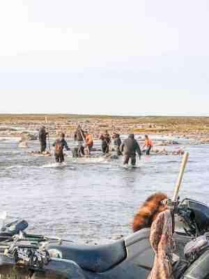 2409Molly Aggark Molly Aggark Rankin Inlet A few locals from Rankin Inlet, at the Diane River Saputi catching fish with nets and kakivaks . Aug. 25, 2018.