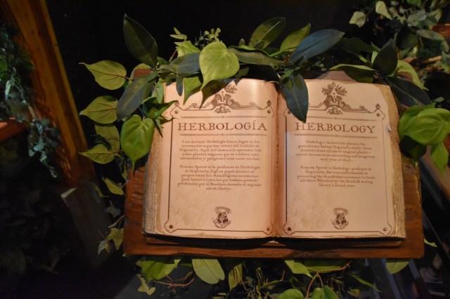 Libro entre hojas abierto por una página que pone Herbología