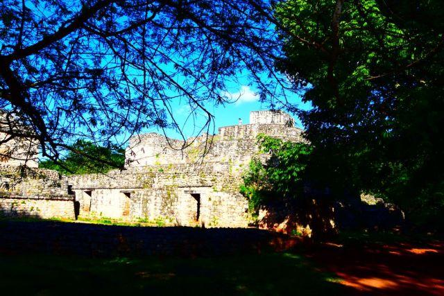 Panoramica de las ruinas de Ek Balam con las ramas de los árboles por delante