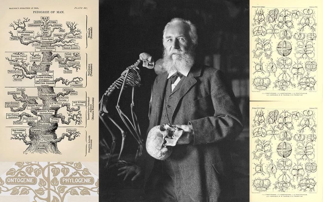 Ernst Haeckel, un biologiste singulier
