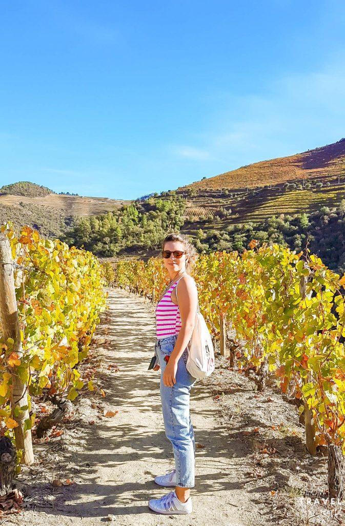 Região Douro | Roteiro de Viagem para Portugal