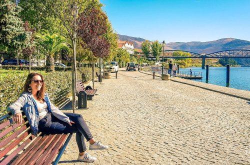Orla do Rio Douro | Região do Douro Vinhateiro