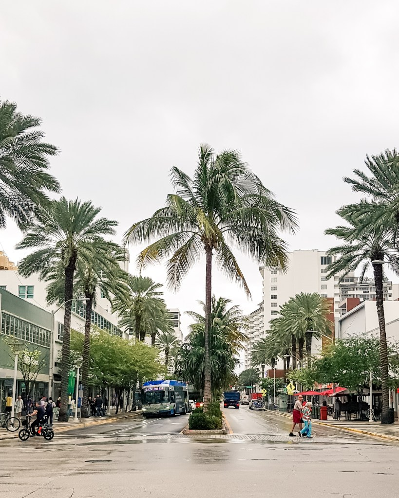Miami // Lincoln Road