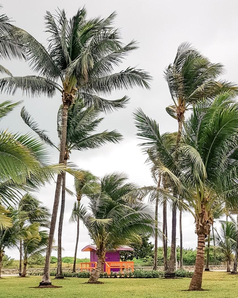 O que fazer em Miami em 1 dia // South Beach