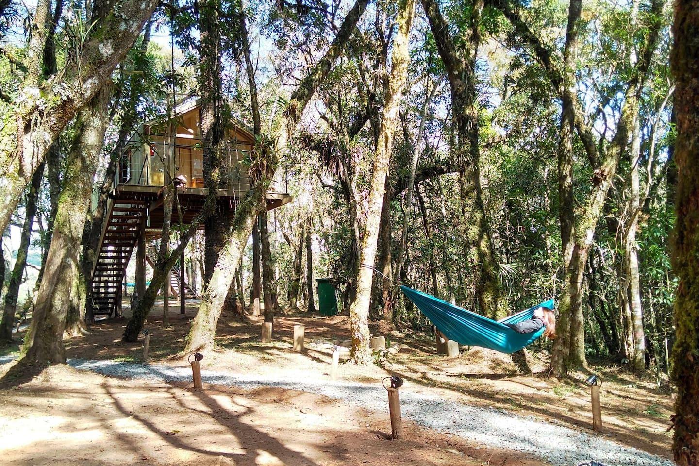 Turismo de Isolamento / Casa na Árvore em Campos do Jordão, SP