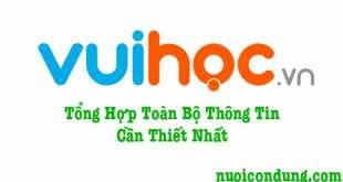 VuiHoc.vn---Vui Học