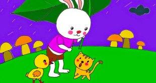 truyện thỏ trắng đi học