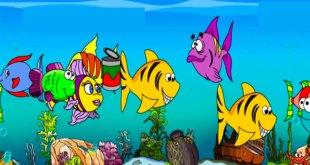 bài thơ rong và cá