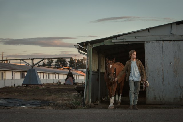 'Lean on Pete' di Andrew Haig. Al secondo posto