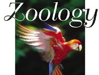 Comparative Anatomy : Protozoa,non-chordates & chordates