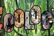 Introduction to Zoology-Applied Zoology