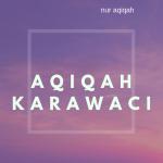 jasa catering aqiqah di karawaci
