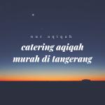 catering aqiqah murah di tangerang