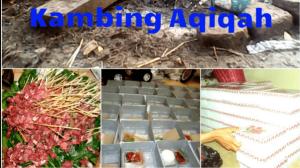 catering aqiqah di citayam