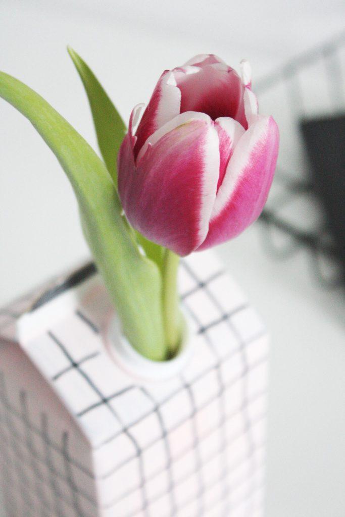 Upcycling-DIY-Vase-aus-Tetrapack-9-683x1024