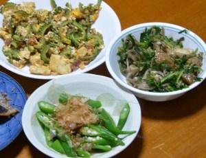 庭に生えてた野菜の晩御飯
