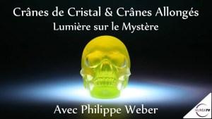 crânes de cristal et cranes allongés
