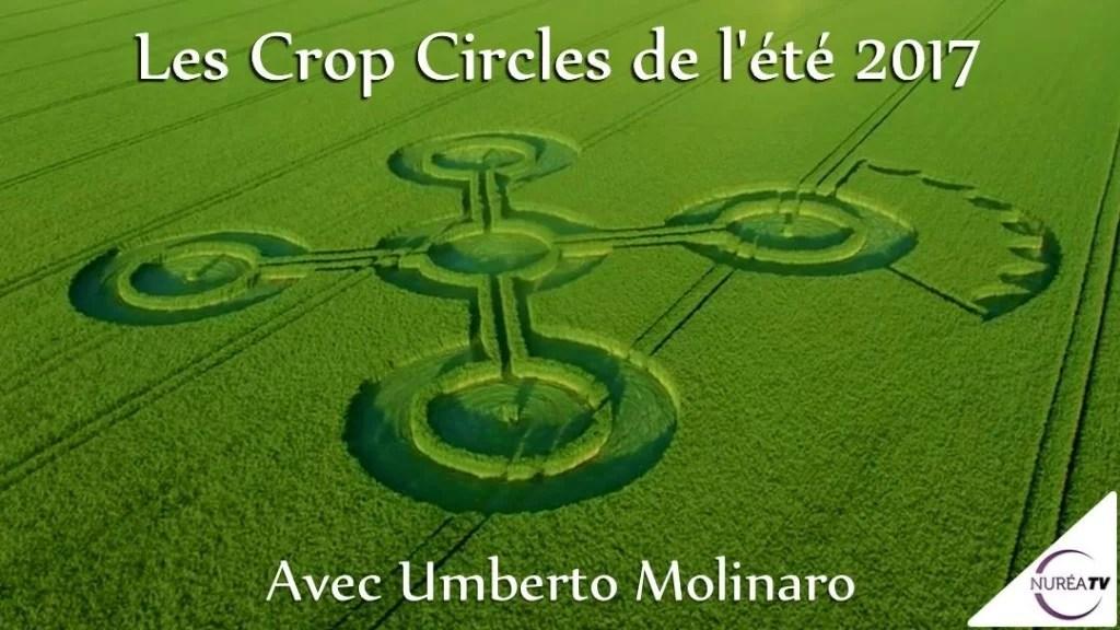 Umberto Molinaro crop circle