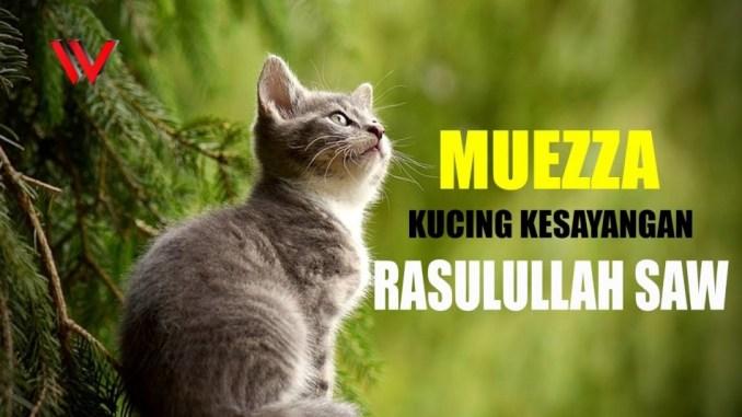 Nama Kucing Comel 81021 Nama Untuk Kucing Comel Lucu Dan Unik