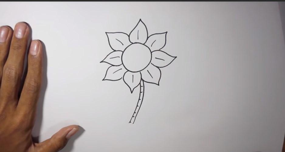 Batang Bunga Matahari