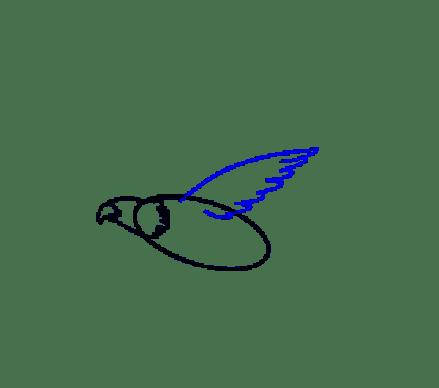 Cara Menggambar Garuda: Langkah 7